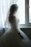 Silhouette. The beautiful bride prepares for wedding. Silhouette on a background of a window Stock Image