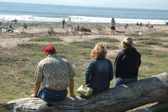 Silhouette of 3 people whatching surfers. Three people sitting on log at the beach in Southern California stock photography