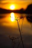 Silhouette abstraite d'usine au coucher du soleil Images stock