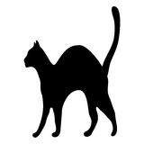 Silhouette afraid cat Stock Images