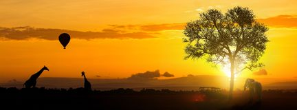 African Safari Adventure Header. Silhouette of Africa sunrise safari with giraffe, elephant and tourist vehicle. Sized for website header or popular social media Stock Photo