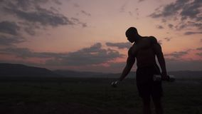Silhouette of african american muscular body builder lifting dumbbells against the pink sunset sky background. Outdoor
