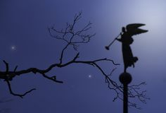 Silhouette of the angel. Nochinoe sky with silhouette of the branch and ballyhooing angel royalty free stock photography