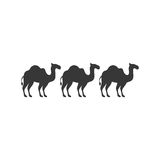 Silhouette animal figure of camels flat icon. Vector illustration Royalty Free Stock Image