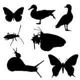 Silhouette of animals Stock Photos