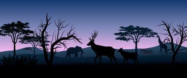Silhouette animals savannas in the night. Illustration of silhouette animals savannas in the night stock illustration