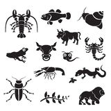 Silhouette - animaux Images stock