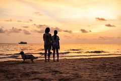 Silhouette of Asian girl on the beach on sunset. Silhouette of Asian girl with dog on the beach on sunset background thailand white alone attractive beautiful stock images