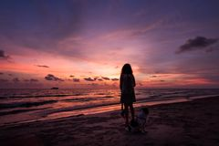 Silhouette of Asian girl on the beach on sunset. Silhouette of Asian girl with dog on the beach on sunset background thailand white alone attractive beautiful stock photos