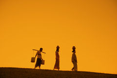 Silhouette of Asian traditional farmers Stock Image