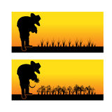Silhouette of an asian woman planting rice seedlings and harvest Stock Photo