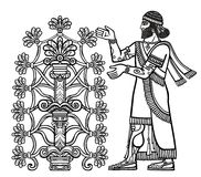 The silhouette of Assyrian deity collects fruits from a fantastic tree. Character of Sumerian mythology.Linear drawing isolated on a white background. Vector Stock Image