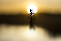 Silhouette av cyklisten Arkivbilder