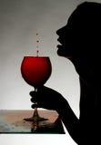 Silhouette av en kvinna Arkivfoto
