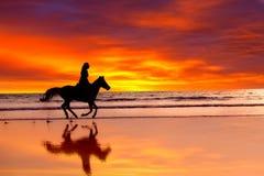 Silhouette av flickan som hoppar over på en häst Arkivbilder