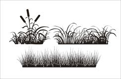 Silhouette av gräs Royaltyfri Bild