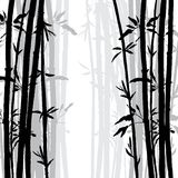Silhouette of bamboo grove Royalty Free Stock Photography