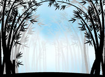Silhouette bamboo jungle with fog Stock Image