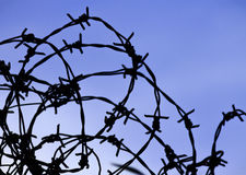 Silhouette of Barbed Wire Royalty Free Stock Photo