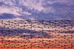 Silhouette of barbed wire Royalty Free Stock Images