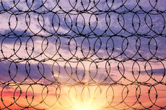 Silhouette of barbed wire Stock Images