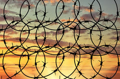 Silhouette of barbed wire Royalty Free Stock Image