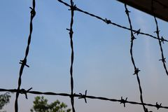 Barbed wire silhouette. Silhouette of barbed wire in a prison stock photography