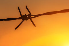 Silhouette of Barbed wire on sunset background Stock Photo