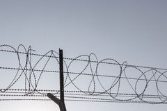Silhouette barbwire Royalty Free Stock Photo