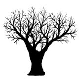 Silhouette of bare tree on a white background. Stock Image