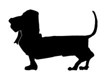 Silhouette of basset hound Stock Photography