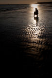 Silhouette at the beach. Silhouette at sunset, beach in the Netherlands Stock Photography