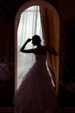 A silhouette of a beautiful  bride Stock Photos