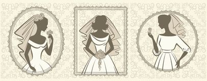 Silhouette of beautiful bride in dress Stock Photos