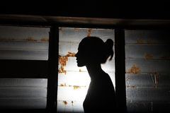 Silhouette of a beautiful girl Stock Images