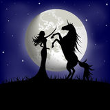 Silhouette of beautiful girl and unicorn. On a background of the night sky Royalty Free Stock Image