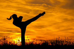 Silhouette of beautiful kick boxing girl Stock Images