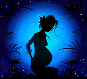 Silhouette of a beautiful pregnant woman Stock Photo
