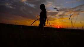 Silhouette of beautiful teen girl standing on a background of gorgeous sunsets stock video
