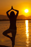 Silhouette of a beautiful woman excercising Yoga Stock Images