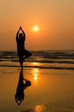 Silhouette of a beautiful Yoga man royalty free stock photo