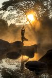 Silhouette of a beautiful Yoga woman in the morning royalty free stock photo