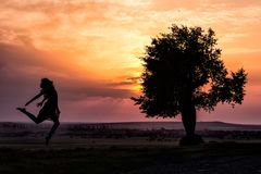 Silhouette of a beautiful young girl jumping in the sunset light near a tree. Dobrogea, Romania Royalty Free Stock Photography