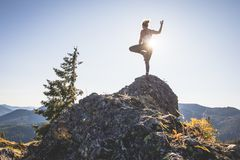 Tree pose on mountain top royalty free stock images