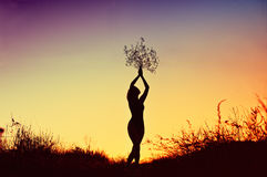 Silhouette of beautiful young woman holding a bouquet over her head at sunset prairie. Silhouette of beautiful young woman holding a bouquet over her head at Stock Image