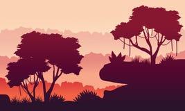 Silhouette beauty jungle landscape Stock Photos