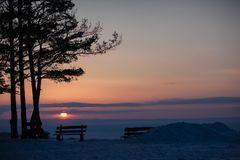 Silhouette of bench and pine on a background of winter sunset Royalty Free Stock Photography
