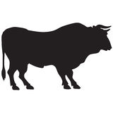 Silhouette of a big bull Stock Images