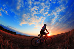 Silhouette of a biker and bicycle on sunset background. Stock Images