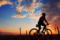 Silhouette of a biker and bicycle on sunset background. Royalty Free Stock Photo
